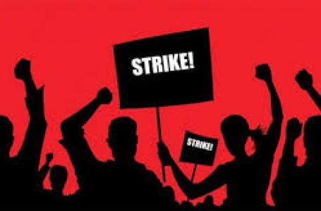 IPPIS: NASU, SSANU To Embark On Indefinite Strike Feb 5