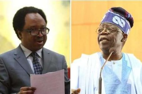 Why Tinubu Has Been Silent About Herdsmen, Farmers Clash In S'West- Shehu Sani