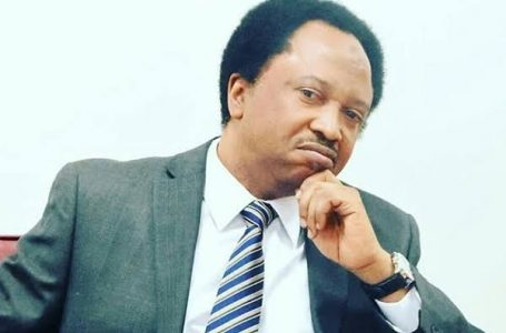Shehu Sani To Gumi: Stop Tagging Soldiers As Muslims, Christians