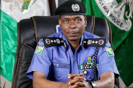 Adegboruwa To Buhari: Keeping Adamu As IGP Beyond February 1 Will Trigger Constitutional Crisis