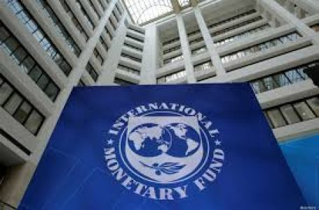 IMF Backs CBN Ban On Cryptocurrency In Nigeria
