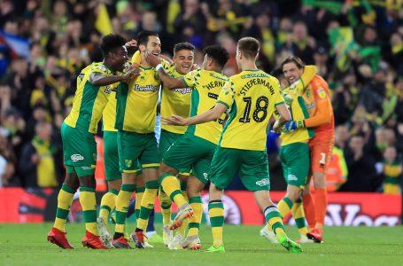 Norwich City Gain Promotion To Premier League